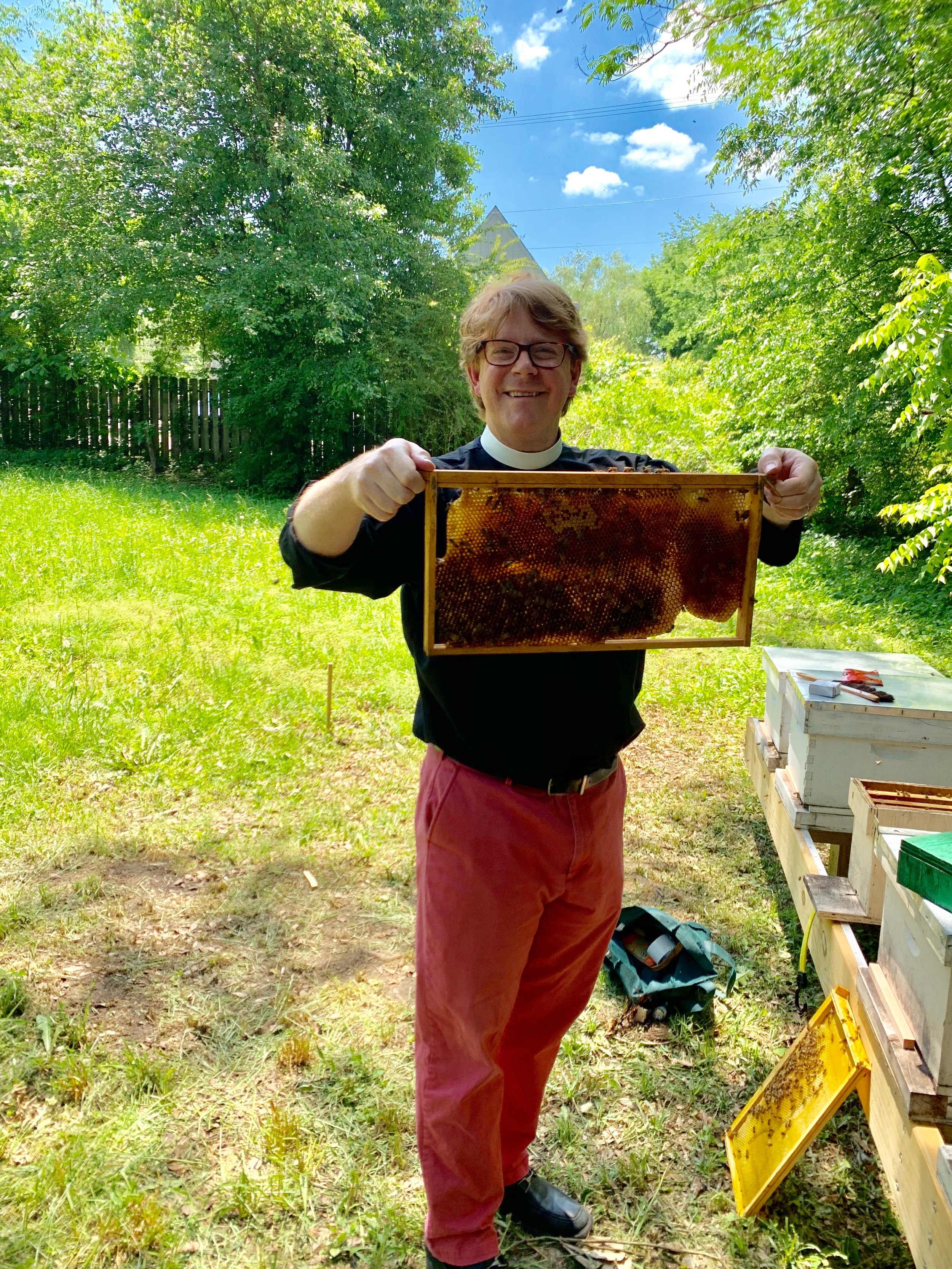 SSE Bees - John.jpeg