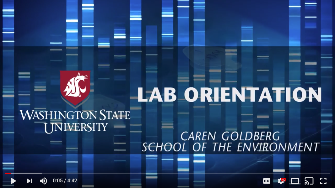 WSU eDNA Lab Overview