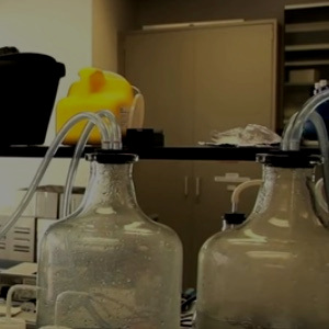 Filtering water samples for eDNA analysis - USACE