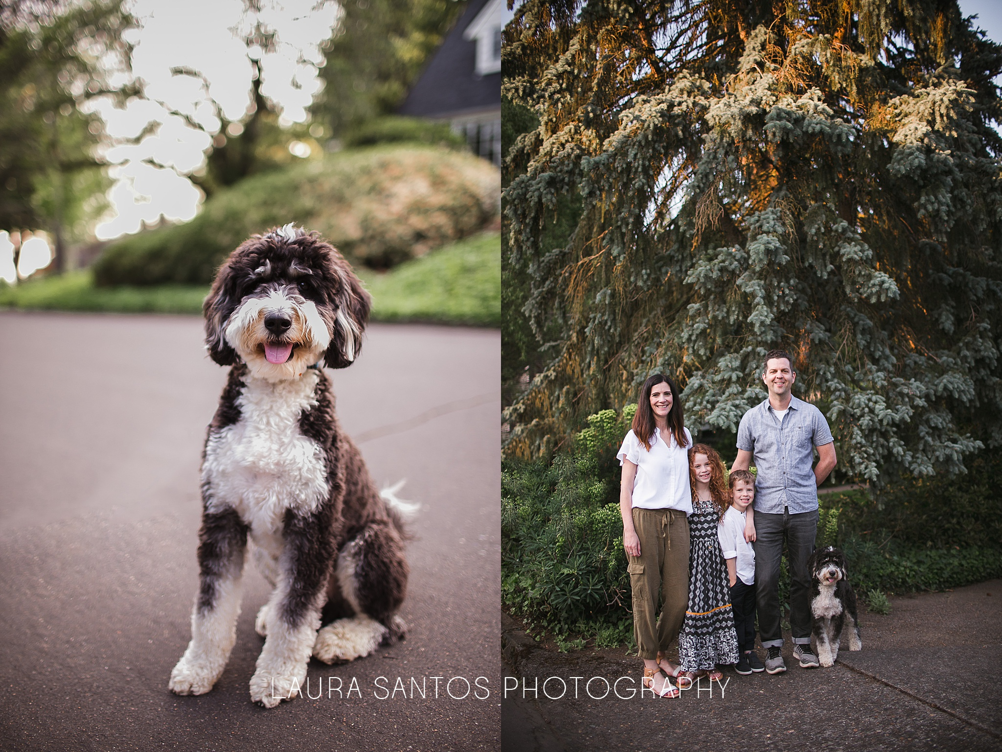 Laura Santos Photography Portland Oregon Family Photographer_0971.jpg
