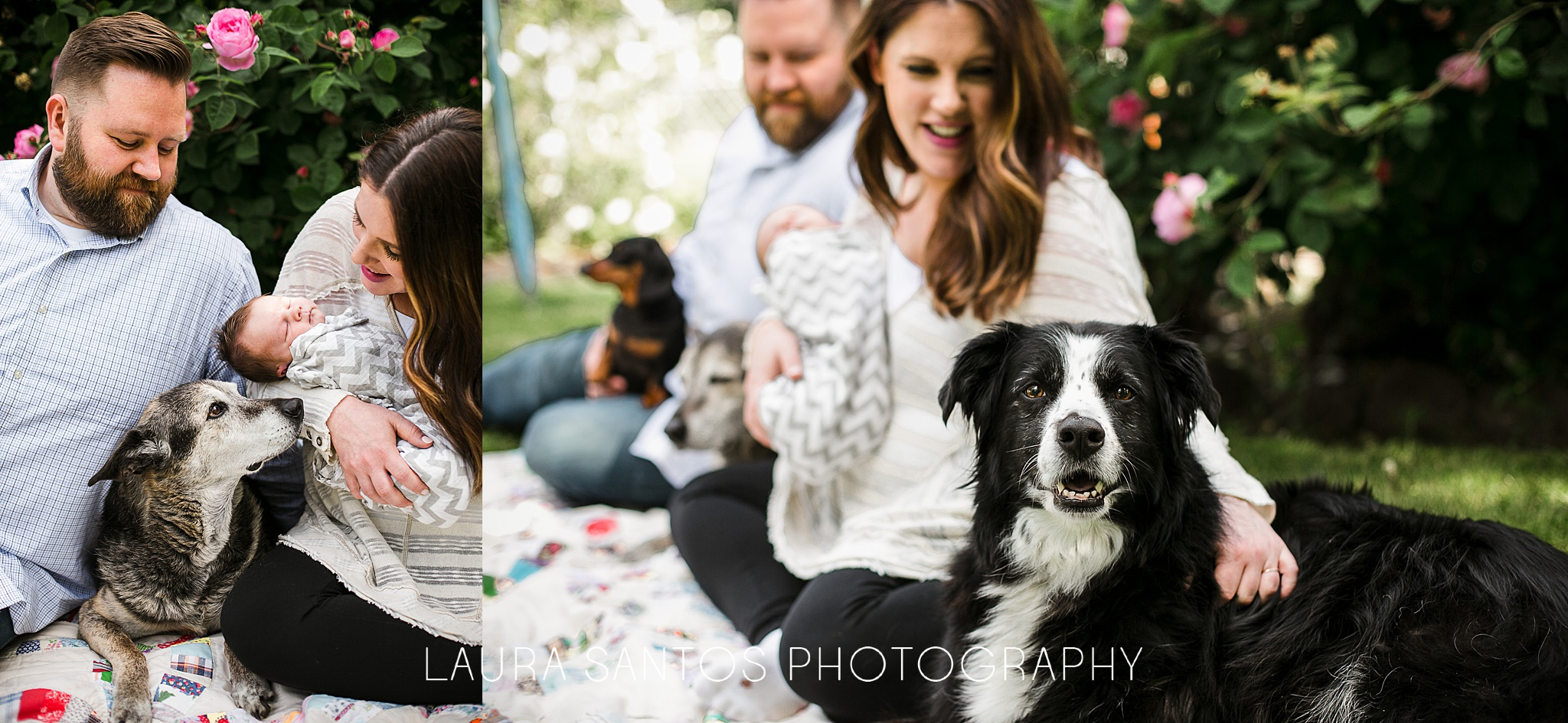 Laura Santos Photography Portland Oregon Family Photographer_0980.jpg