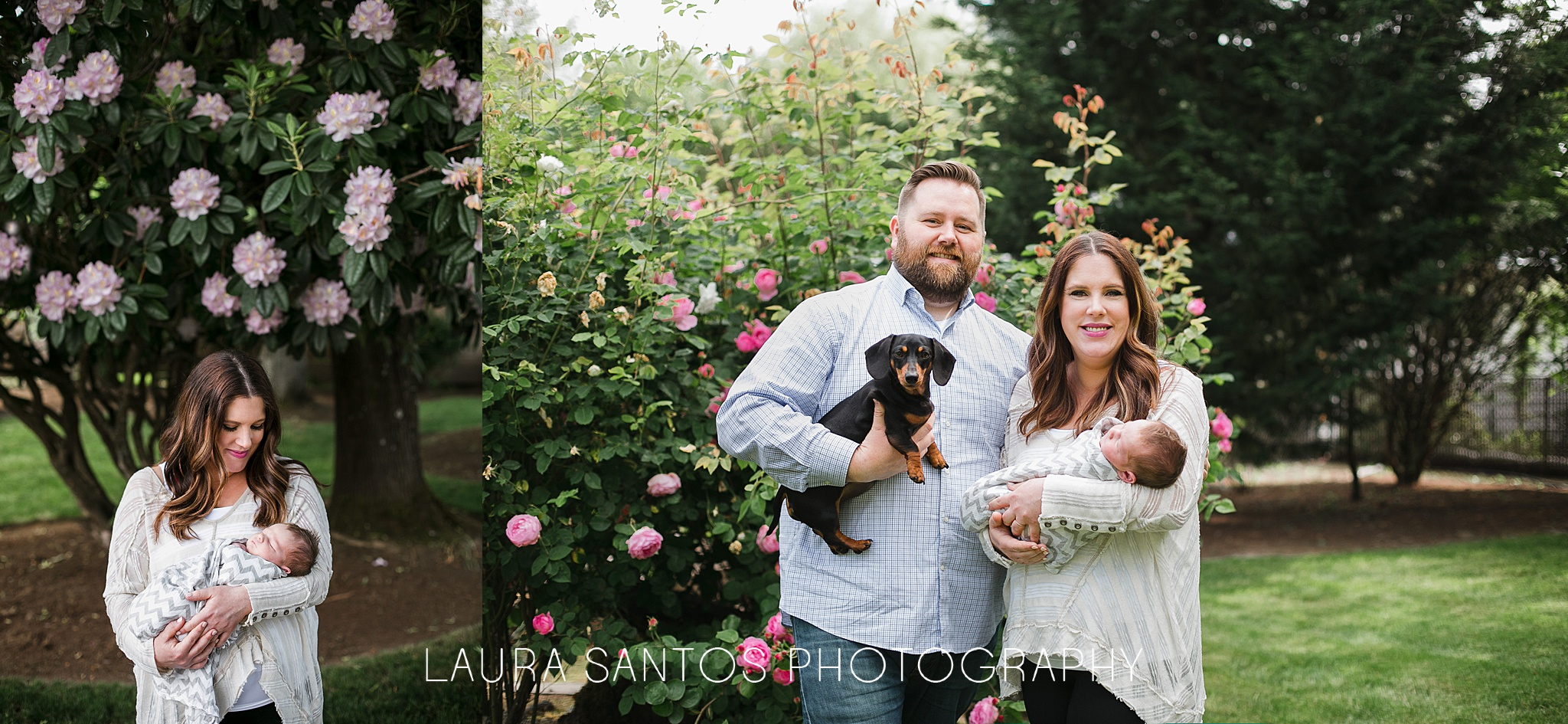 Laura Santos Photography Portland Oregon Family Photographer_0992.jpg