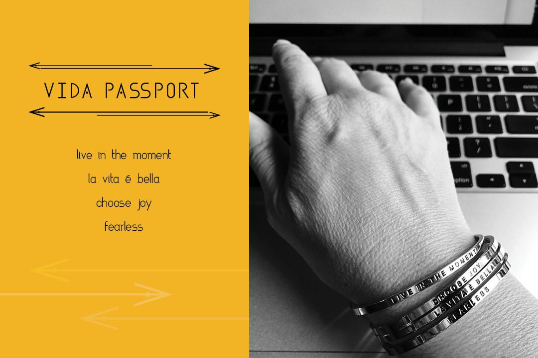 VidaPassport_Blog1_Image.jpg