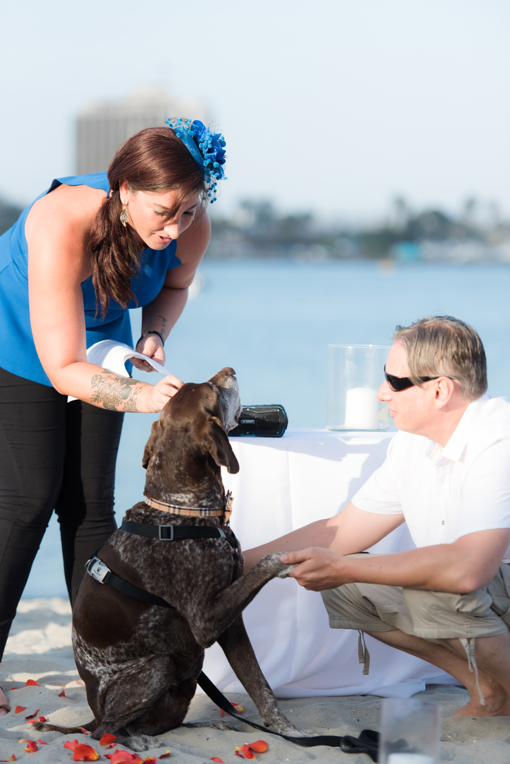 Blog_SeniorTails_JakeBagelWedding011.jpg