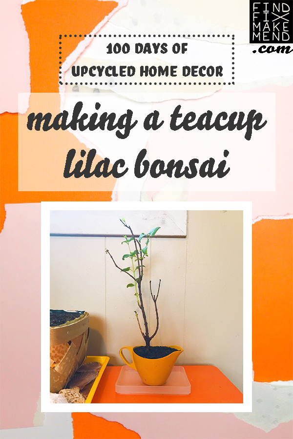 Making a Teacup Lilac Bonsai on the Find/Fix/Make/Mend blog. // 100 Days of Upcycled Home Decor, 100 Days of Things You Need To Hear // Upcycling, Repurposing, and Growing + Creative Motivation, Inspiration, and Support <3 // #The100DayProject #The100DayProject2019 #100DayProject #100DayProject2019