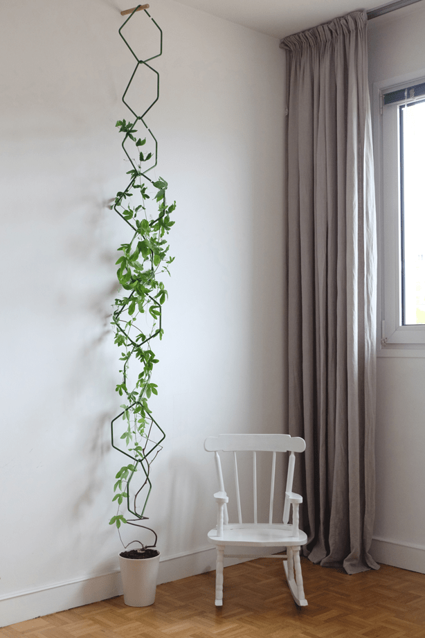 13 Upcycling and Repurposing Ideas for Your Indoor Plants (that will actually look GOOD) at the Find/Fix/Make/Mend blog. // 100 Days of Upcycled Home Decor, 100 Days of Things You Need To Hear // Upcycling, Repurposing, and Growing + Creative Motivation, Inspiration, and Support <3 // #The100DayProject #The100DayProject2019 #100DayProject #100DayProject2019