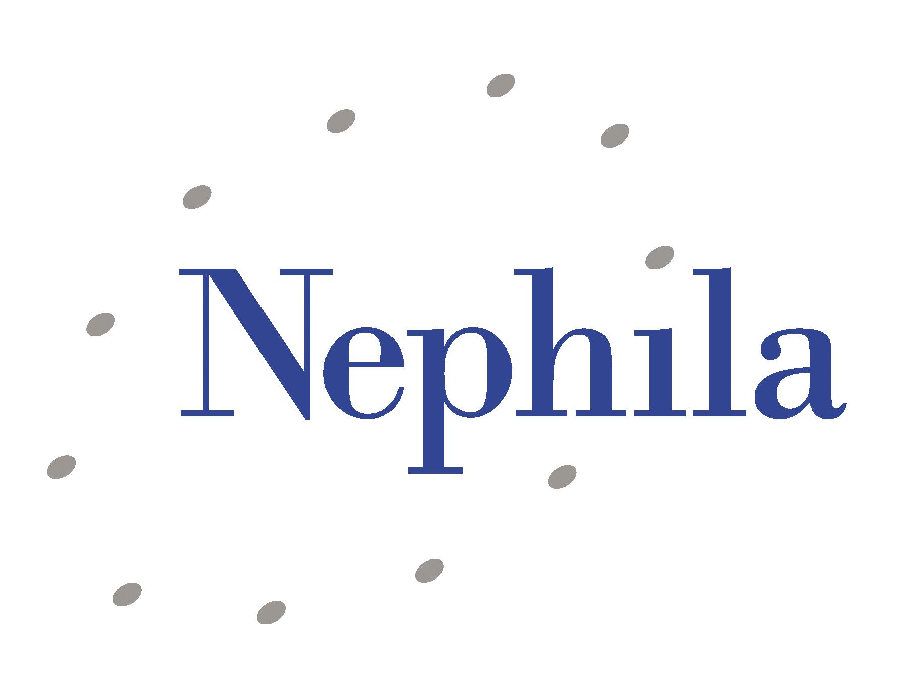 Nephila.png