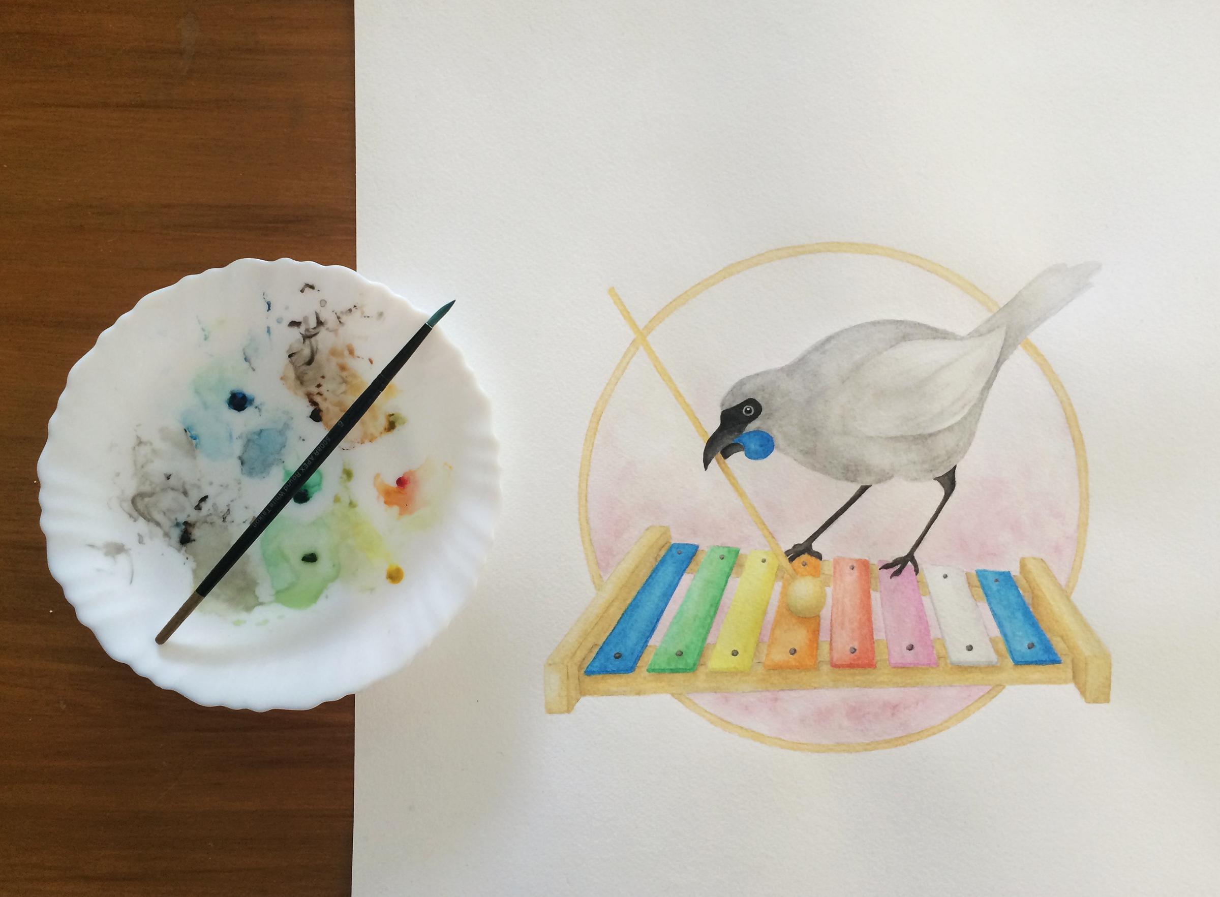 Watercolour-kokako-1.png