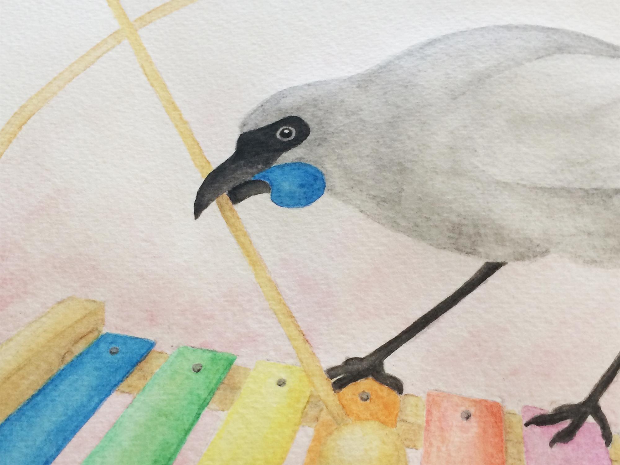 Watercolour-kokako-3.jpg