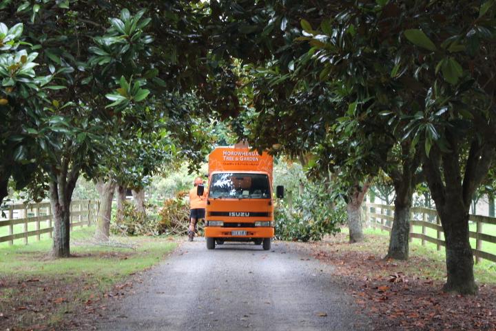 Tree & Garden maintenance Ohau and Manakau