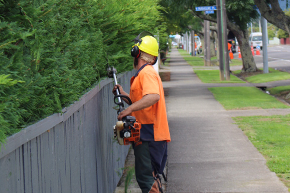 03-Hedge-trimming-3383.jpg