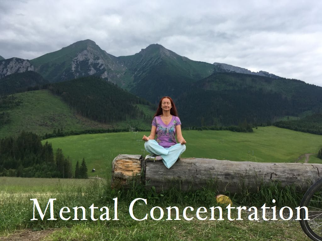 """Mental concentration for all temperaments  When practicing mental concentration techniques, we can ask ourselves: """"What theme should I choose?"""" Here intervenes the problem of individual temperament and adequacy that spiritual masters were always taking into account."""