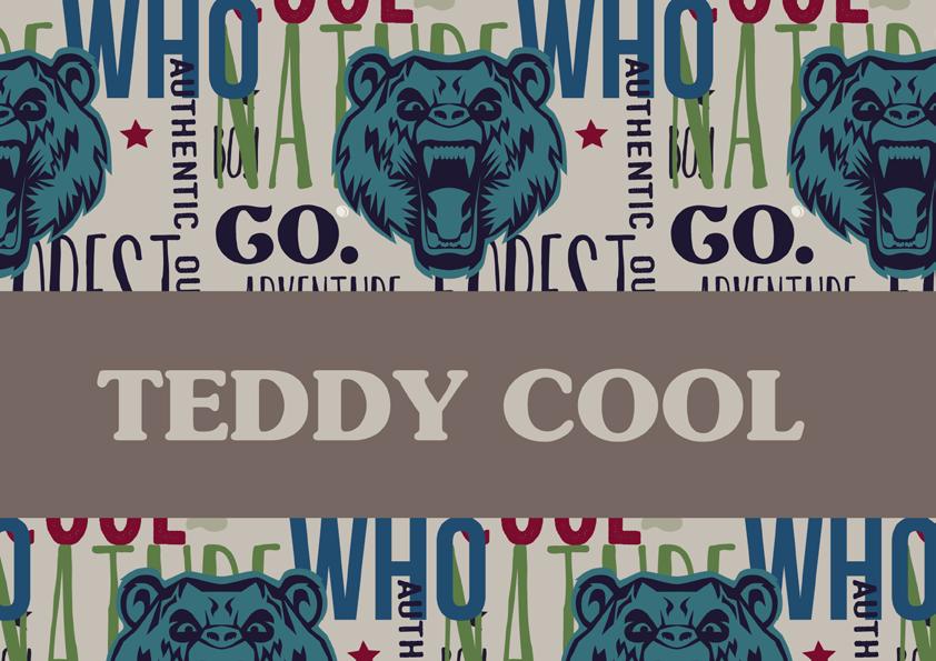 TeddyCool.png