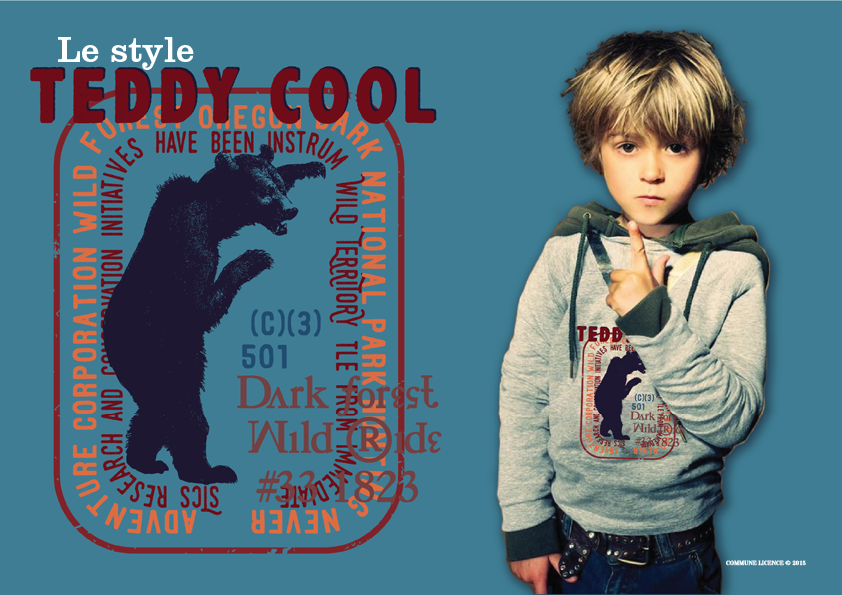 TeddyCool12.png