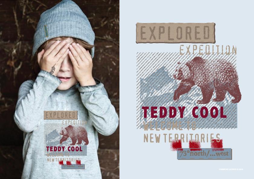 TeddyCool15.png