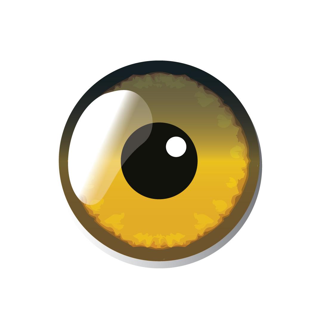 eye_def2.jpg