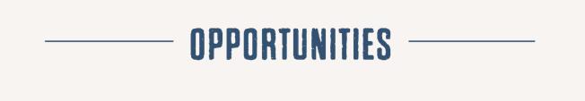 OPPORTUNITIES HEADER.png