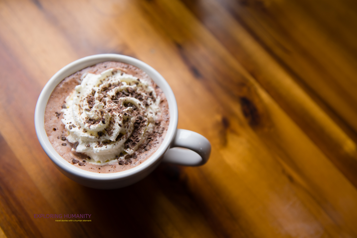 I ordered a hazelnut hot chocolate with whipped cream from Hidden River Roasters.