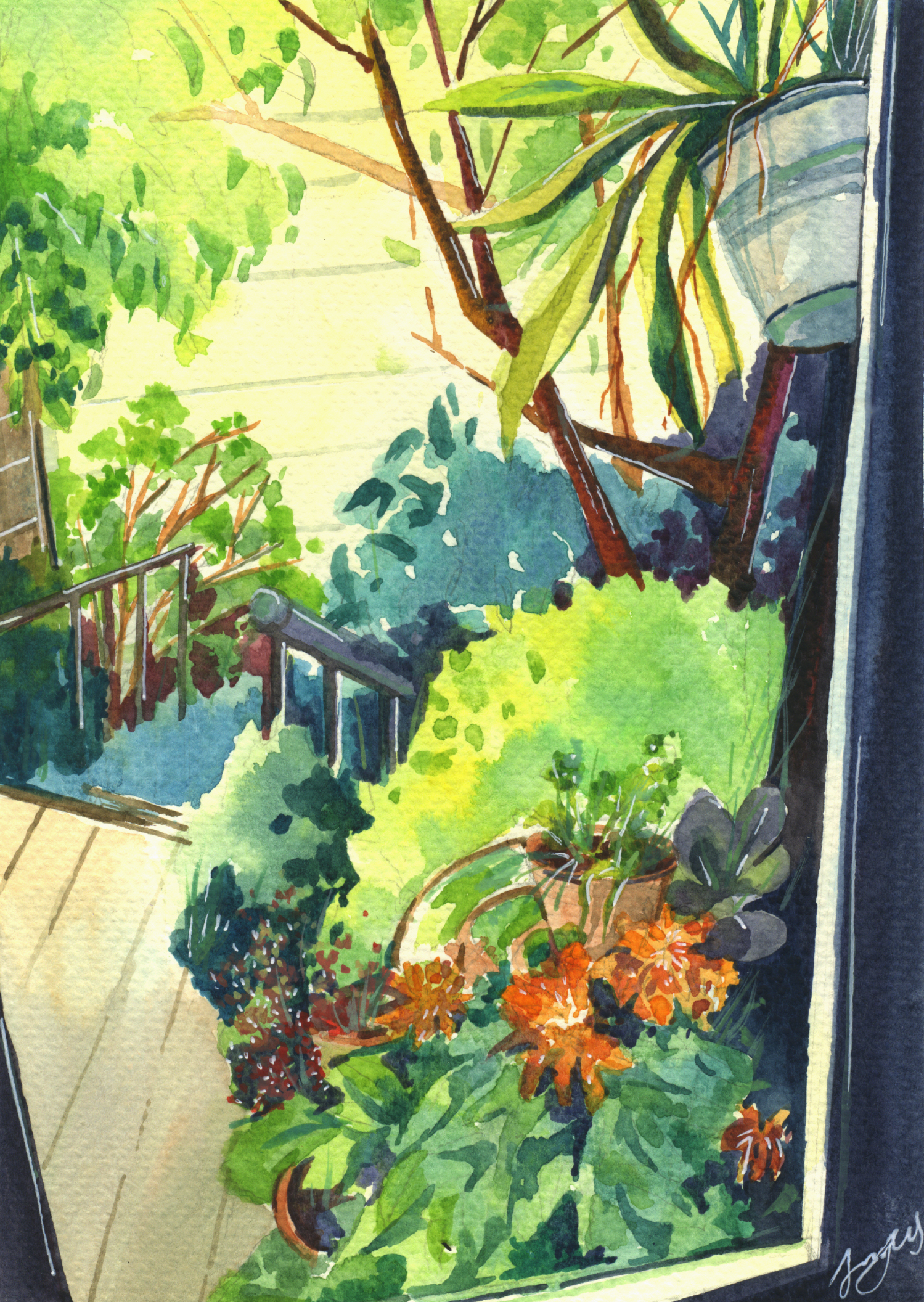 Garden Corner (Watercolours and pen)