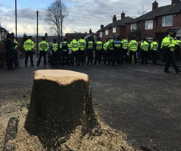 Police protecting tree fellers against protesters in Sheffield