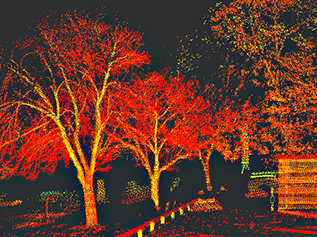 2. LiDAR  LiDAR can see what photogrammetry cannot.  For projects with deciduous vegetation. Ideal for ground mounts that require mapping under tree canopies.