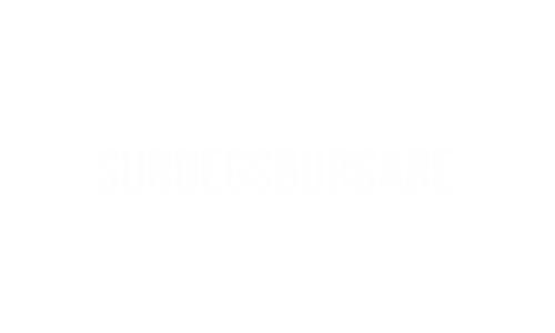 Surdegsburgare.png