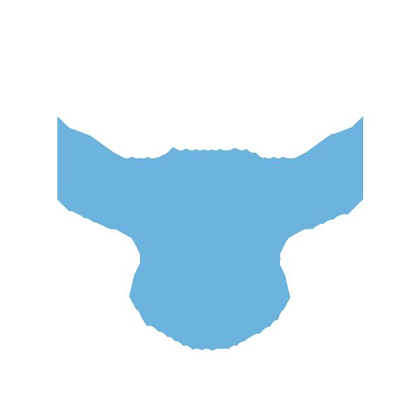 BlueOx_Logo_Full_fullcolor1.png