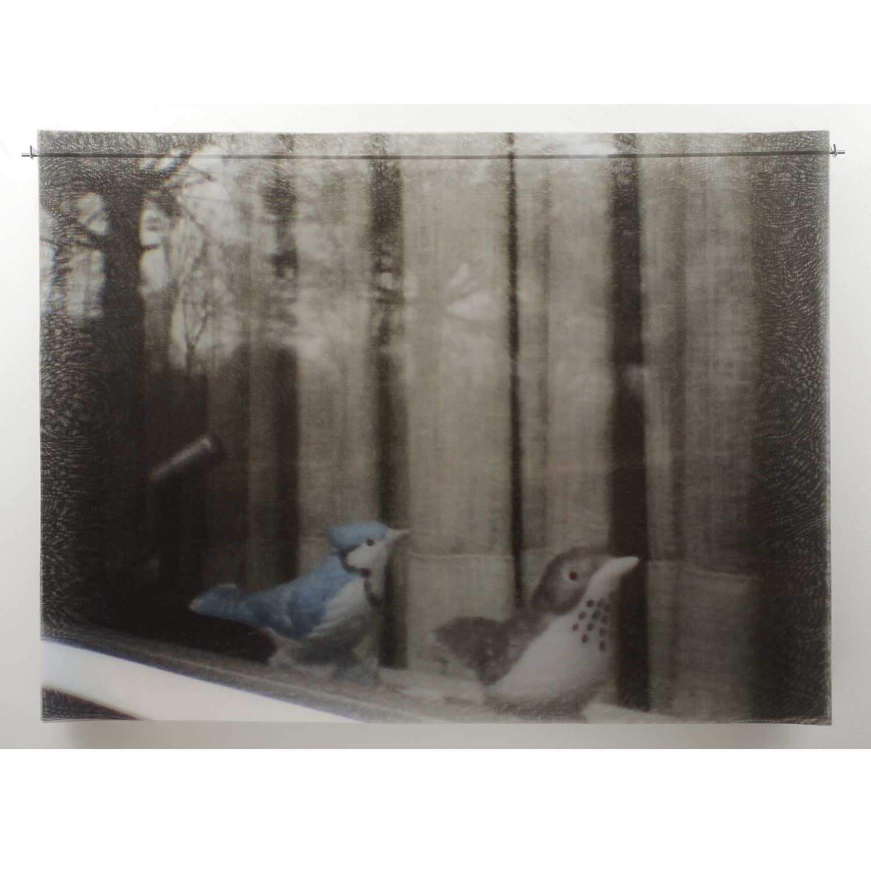 12-DayCatherine_2012.BirdsOnWindowsill.jpg