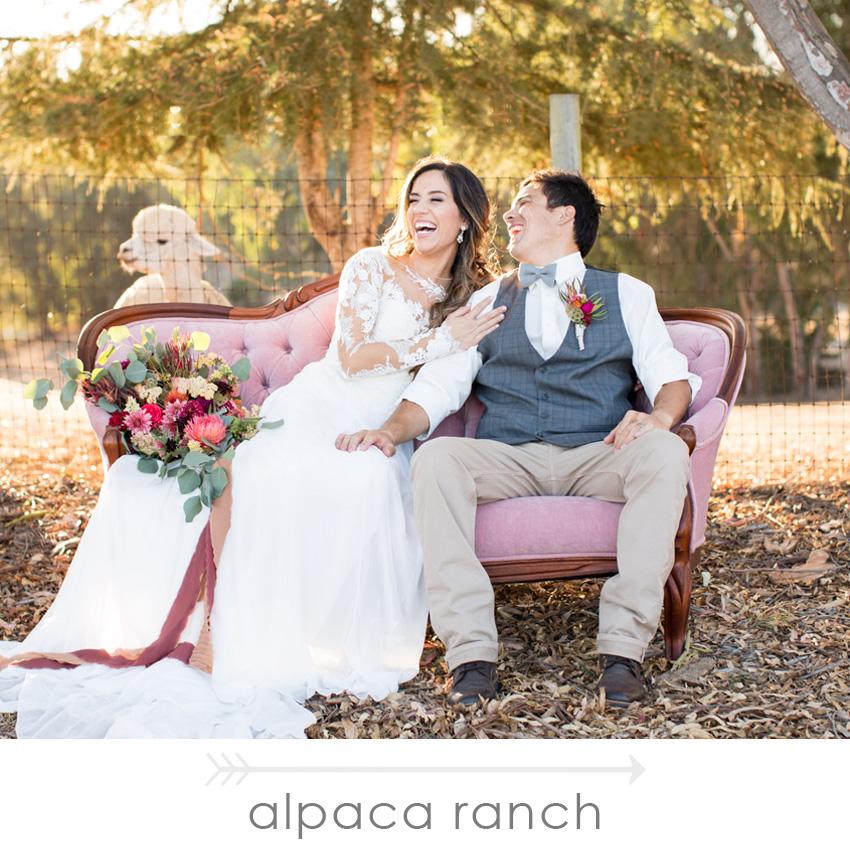 _portfolio_revival_rentals_ALPACA_RANCH.jpg