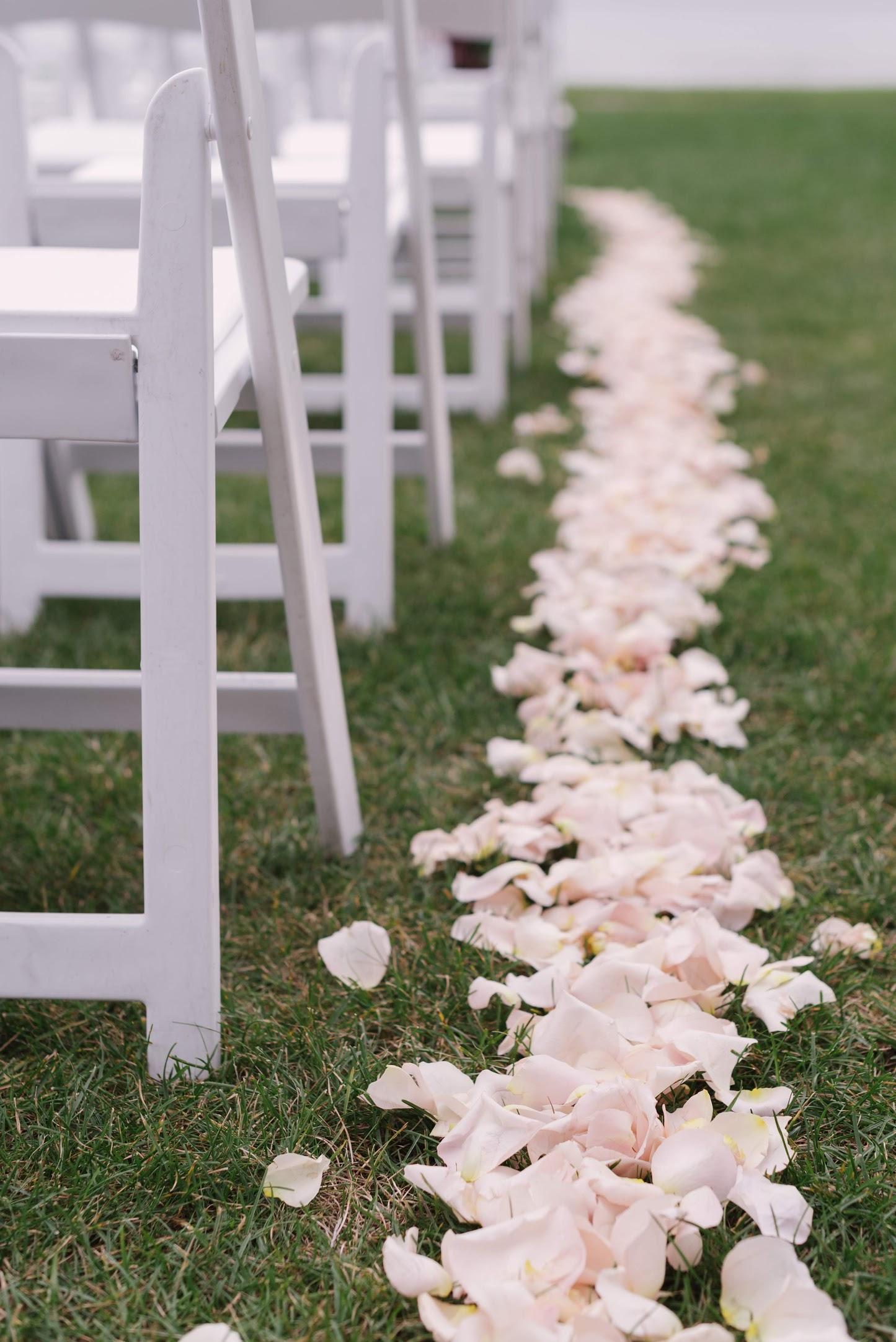 Field-Gems-Photography-Detroit-Michigan-Wedding-Photographer-Family-Photographer-Photobooth-090818-549.jpg
