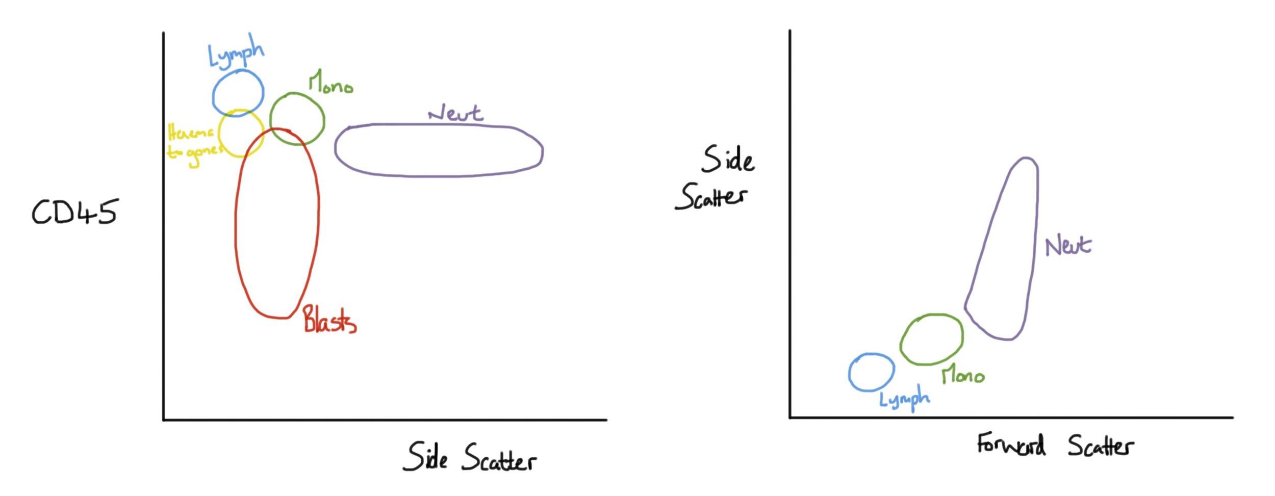 Normal flow charts1.jpg