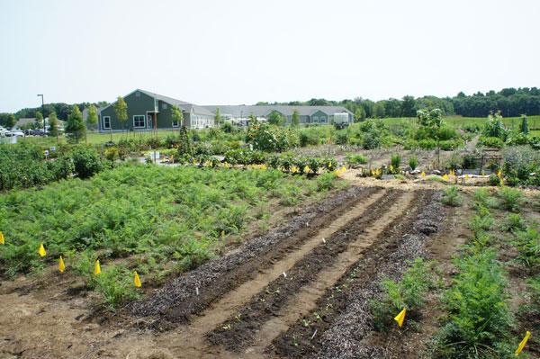 brunswick-topsham-land-trust-solar-install-07.jpg