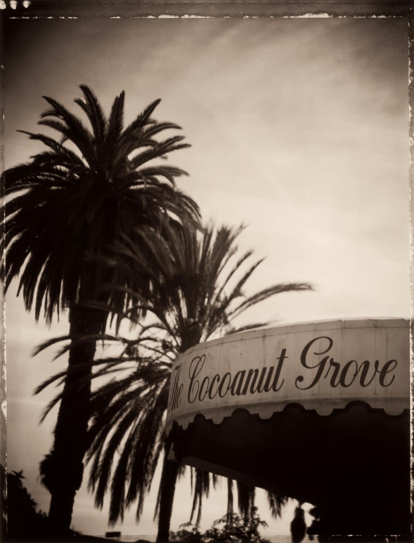The Cocoanut Grove