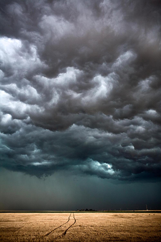 Tracks Through The Field - Kansas, USA - The Big Cloud