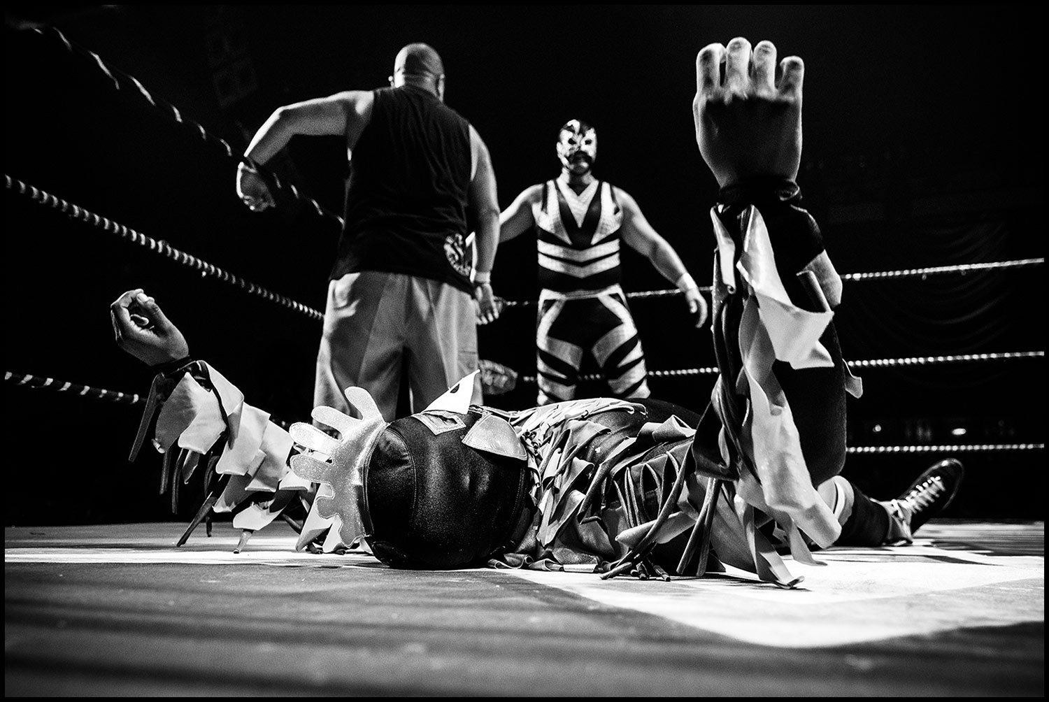 Ruffled Feathers  (Los Angeles, CA) 2018 // A tenderized Crazy Chicken is down for the count while Lil Cholo and Magno reconvene in the back corner of the ring.