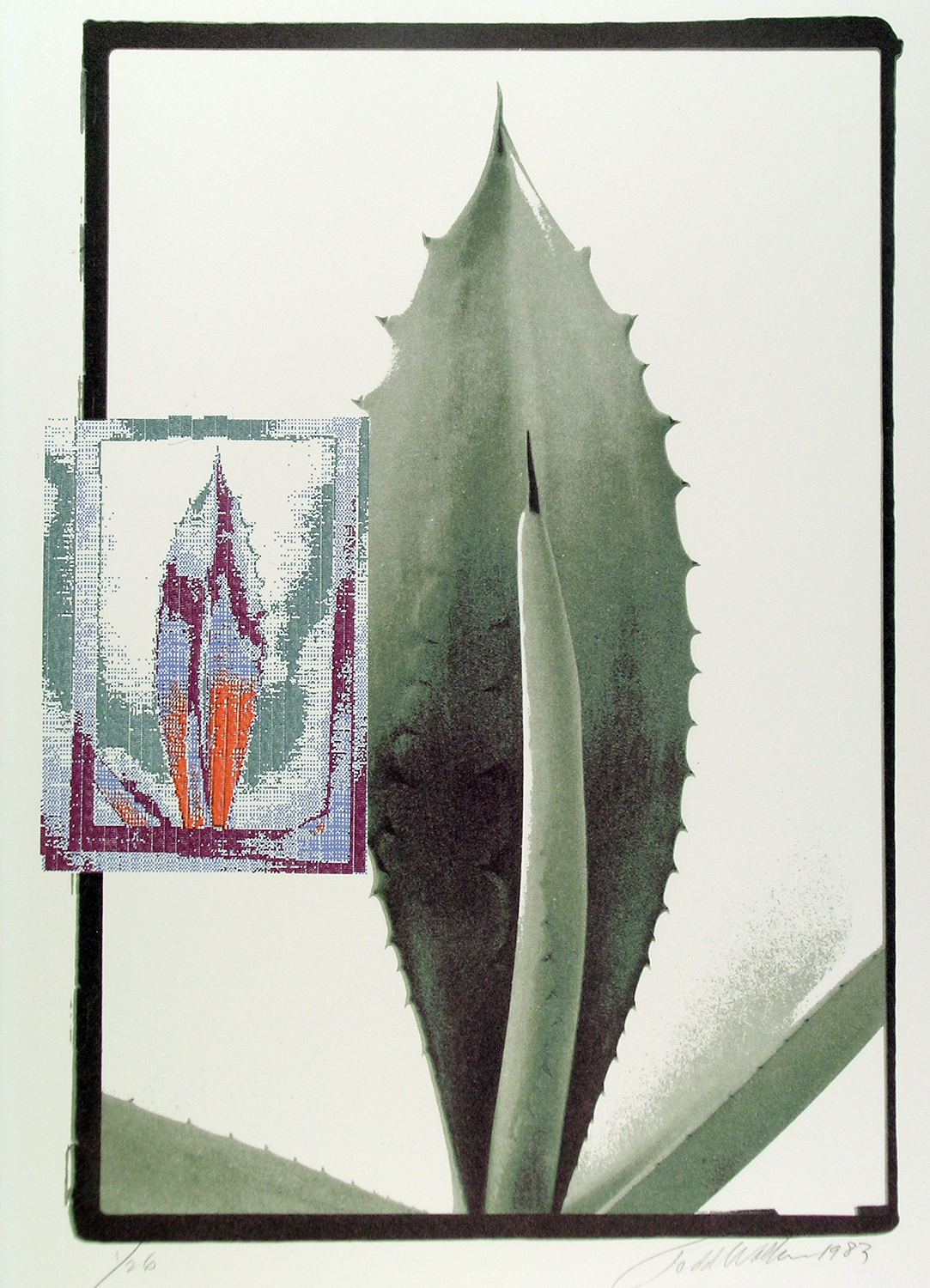 Agave, Digitized - Lithograph, 1983