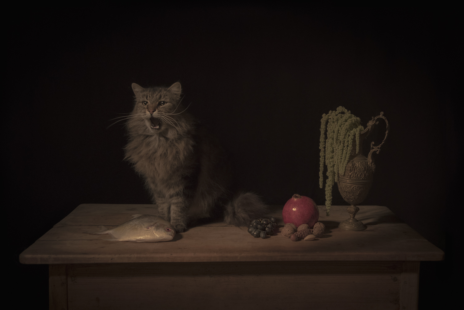 The Feline, from the  Dramatis Personae  collection