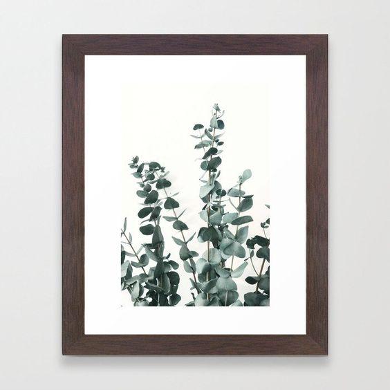 Framed Art Print, Eucalyptus