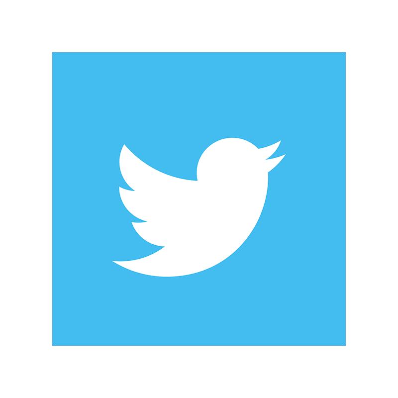 1.Twitter - The Discreet App