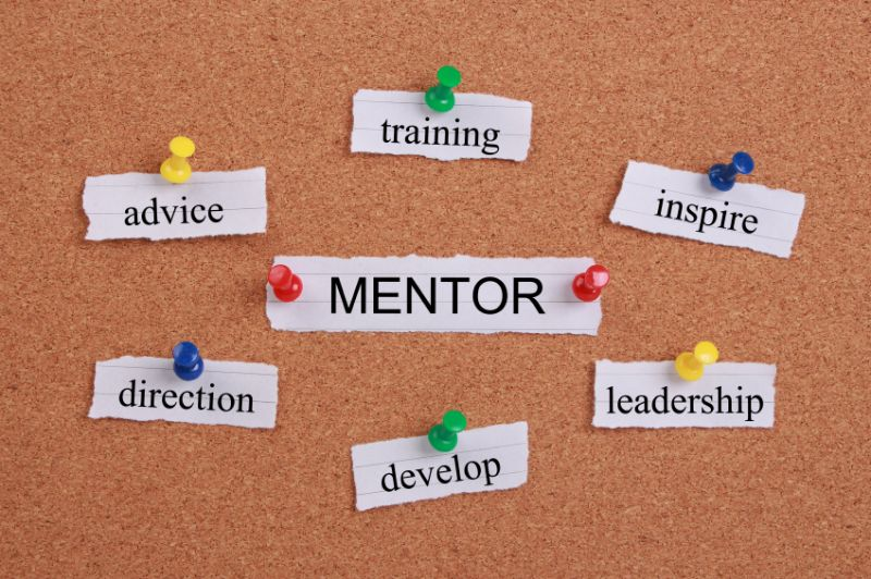 Voluntary and paid mentors are both useful but they play fundamentally different roles.