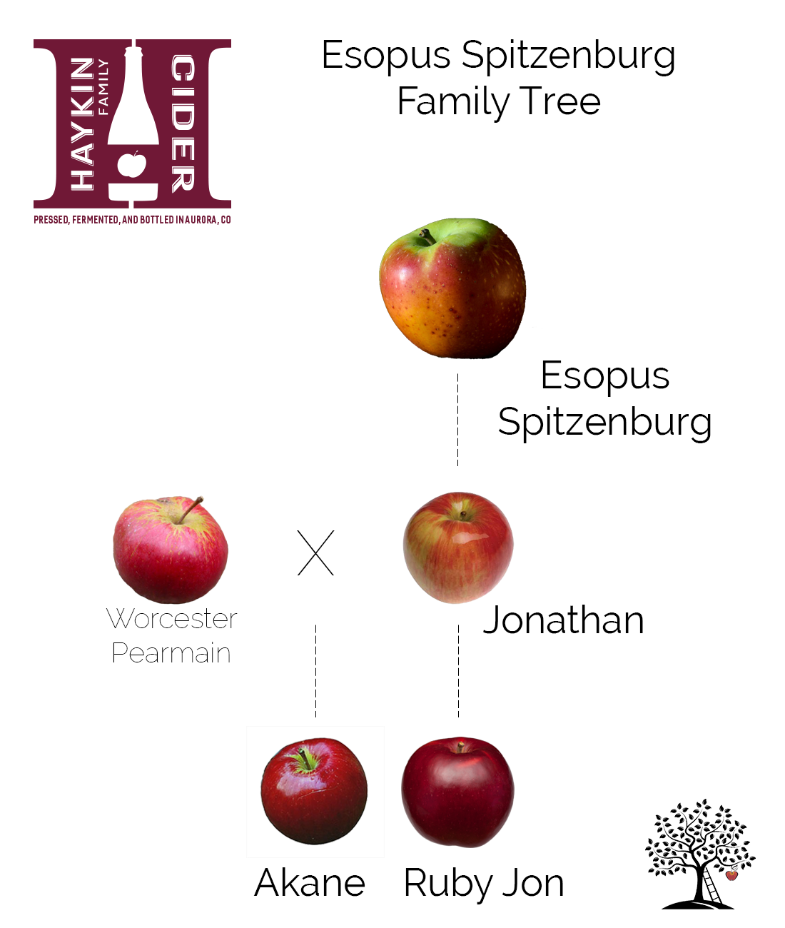 Spitz Family Tree.png