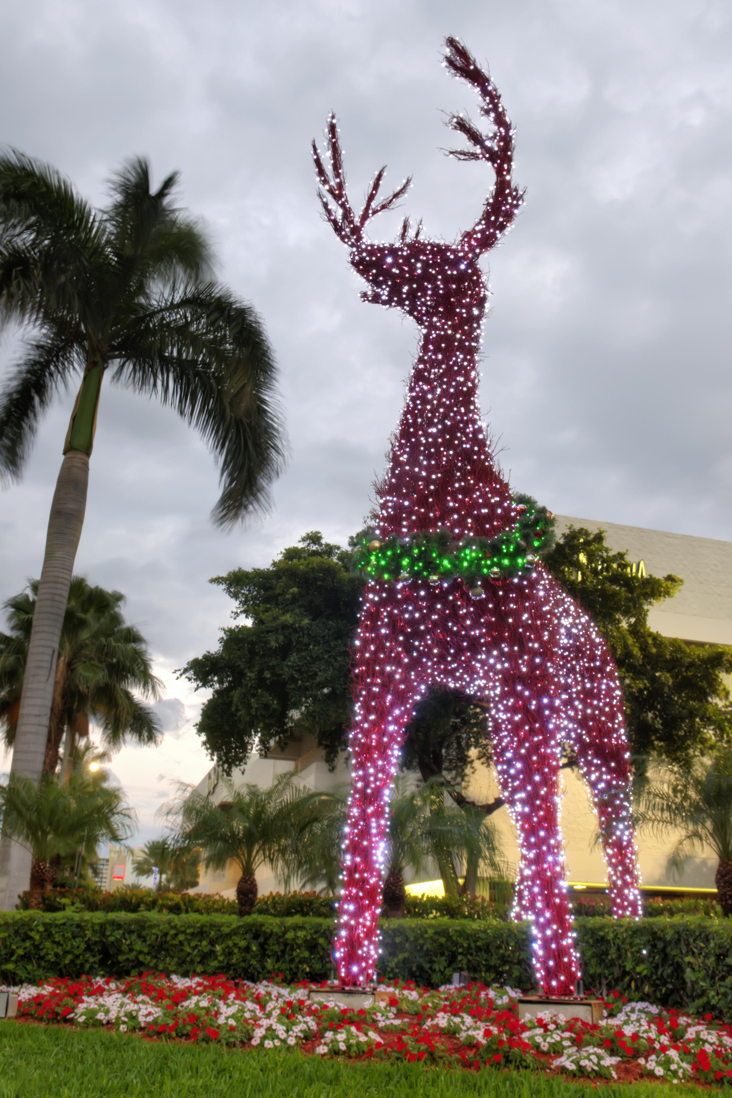 Galleria Deer Blachere (2).jpg