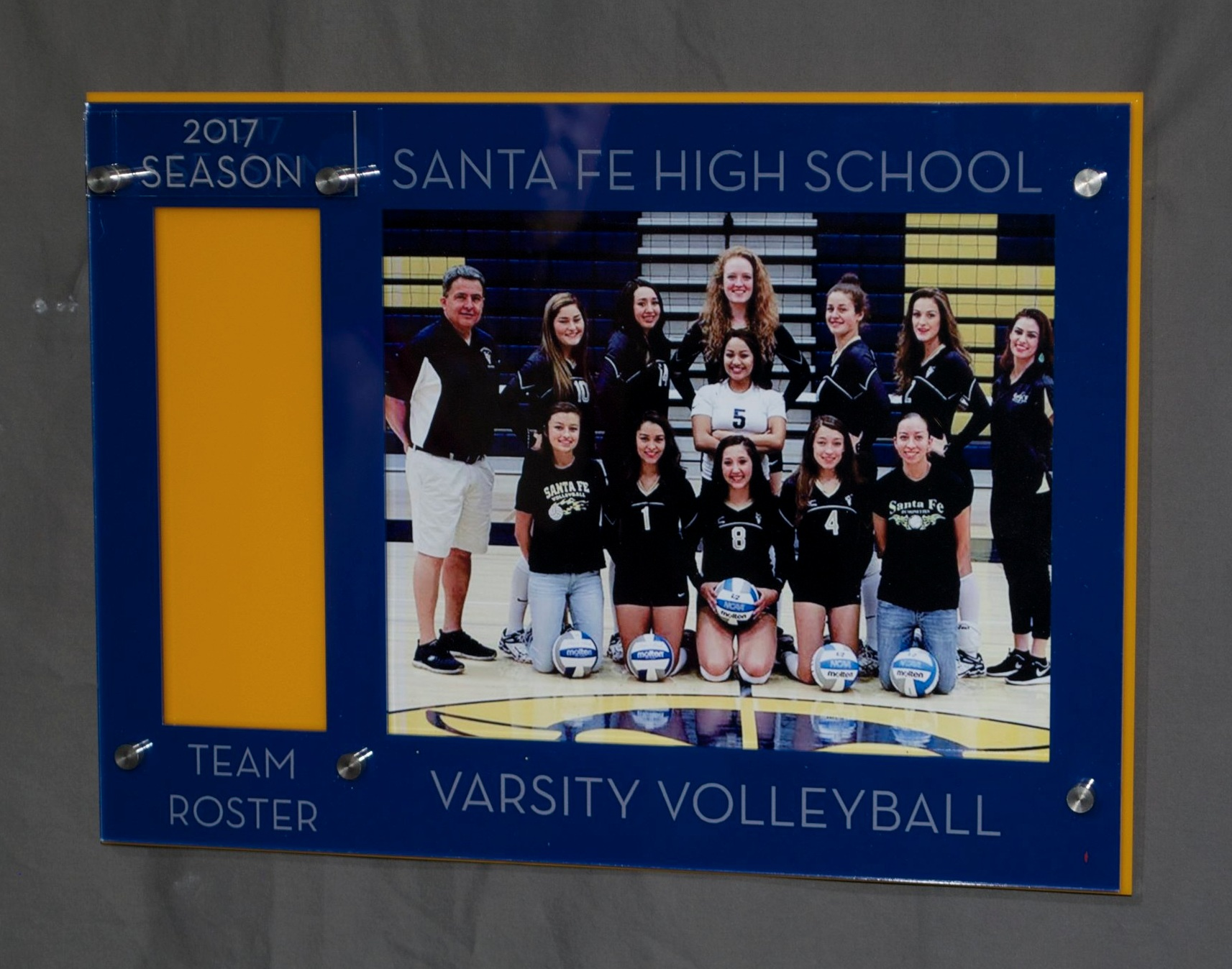 8x10 Landscape Team Photo and Roster slot Frame - slot for roster on left hand side of frame, in team colors, custom etch identifies school and team.  Contact us for pricing information.