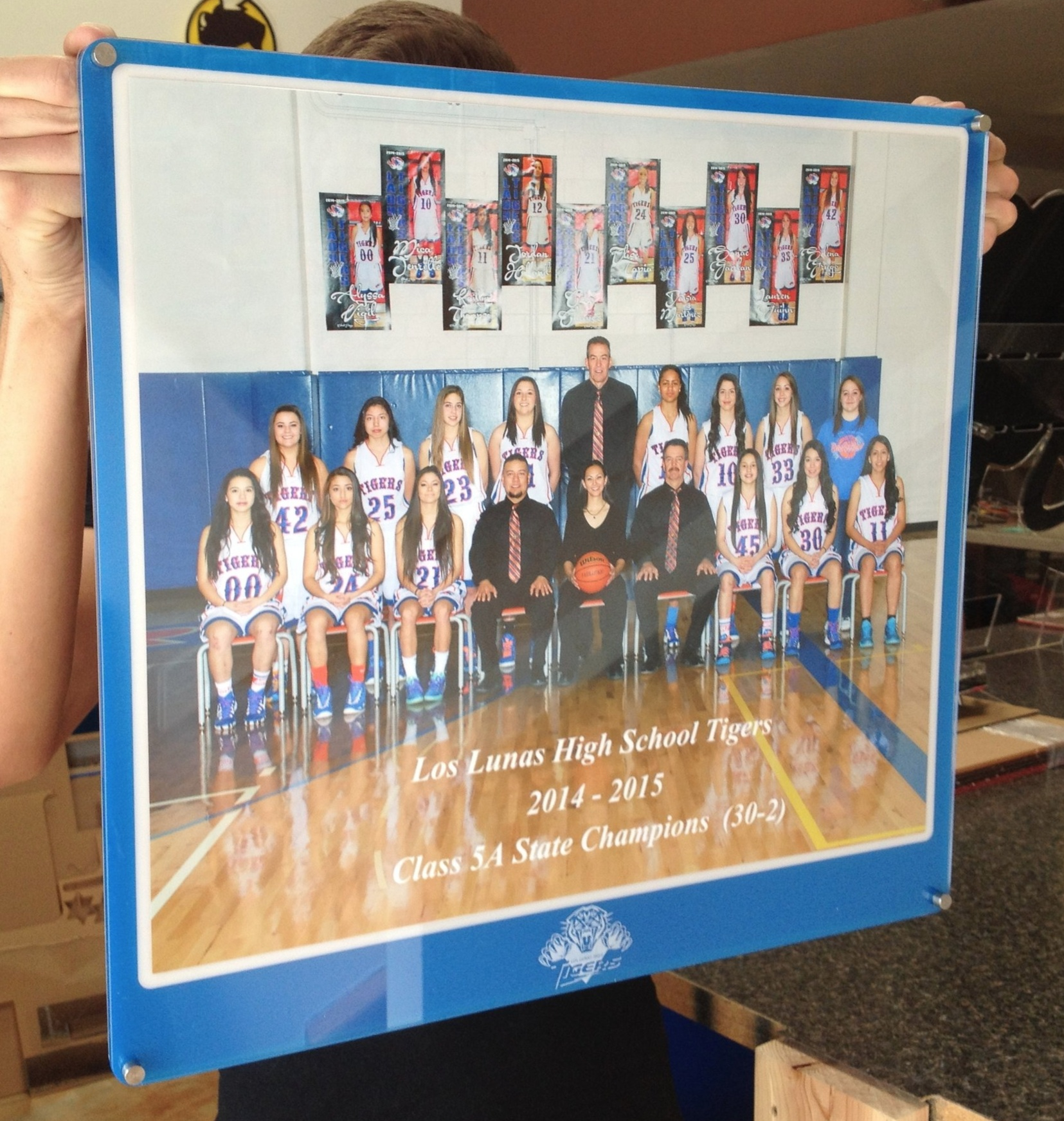 11x14 landscape photo frame - Team frame features school colors and custom etch including School, School Logo, Year and Title of Award frame is celebrating.  Contact us for design and pricing information.