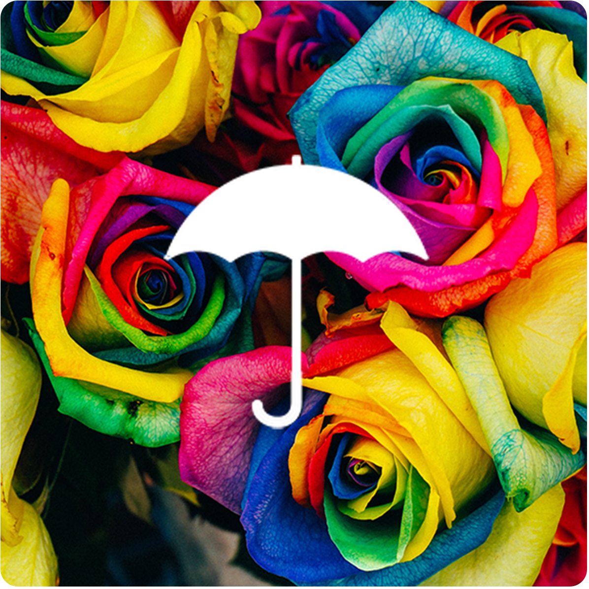 "Under Rylo's Umbrella - 4"" x 4"" designs for smaller embroidery machines"