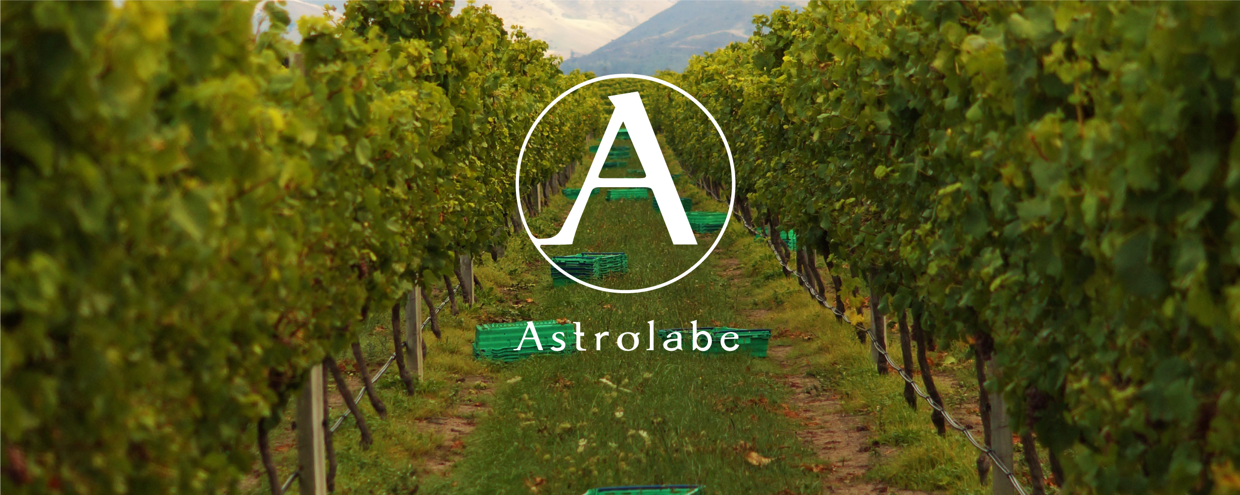 ASTROLABE WINES    MARLBOROUGH, NZ   Named after the ship that in 1827 charted and explored the Marlborough Coast, Astrolabe is a personal project for winemaker Simon Waghorn and his wife, Jane.  Astrolabe produces a range of wines that express the purity and intensity of fruit flavours naturally afforded by the climate and soils of the Marlborough region. All grapes are sourced from unique Marlborough sites, carefully chosen to add complexity and completeness in the wines.  Simon is fascinated by the distinctive qualities of the Marlborough sub-regions, whether bottled alone or blended as part of the Marlborough classic. All Simon's skill and experience combine to capture the essence of Marlborough in wines of purity, focus and elegance.