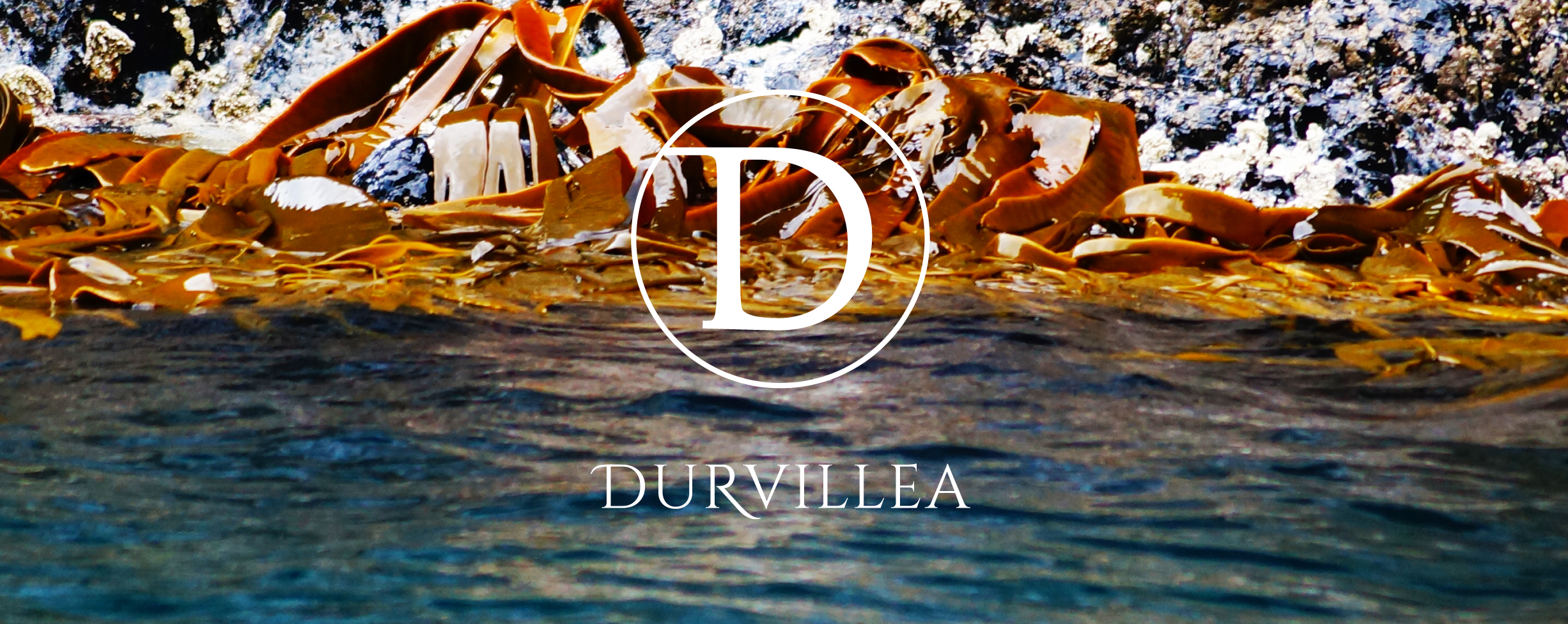 DURVILLEA WINES    MARLBOROUGH, NZ   All along our shores, holding fast to the rocks at low tide is the seaweed, 'Durvillea'. Named after the Captain of L'Astrolabe Dumont d'Urville, this seaweed defines the ruggedness of our rocky coast.  The Durvillea grapes are grown at carefully selected sites across the Marlborough region and harvested at precisely the right moment to preserve the purity and intensity of flavour in the wine. Durvillea is the second label to Astrolabe Wines and is made in a classic Marlborough style with parcels of fruit from the Astrolabe vineyards.