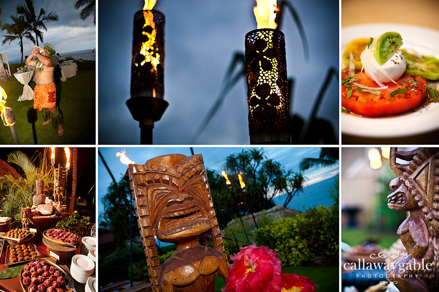 hawaii-wedding-photograph.jpg