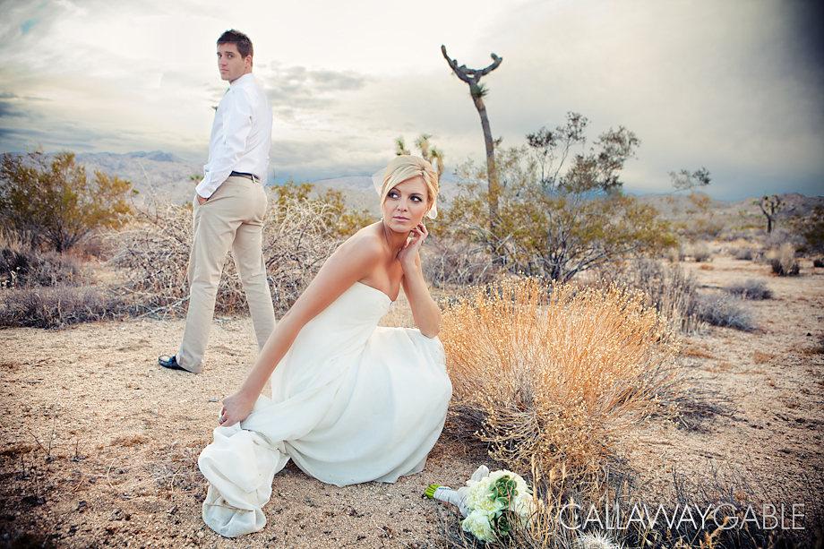 Palm-Springs-Wedding-Photo-5345-Edit