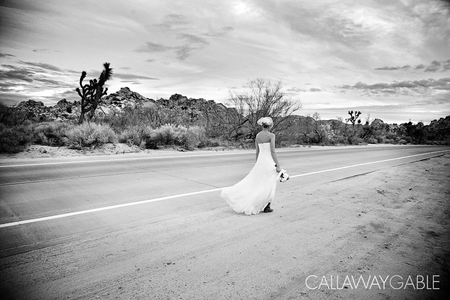 Palm-Springs-Wedding-Photo-5402-Edit